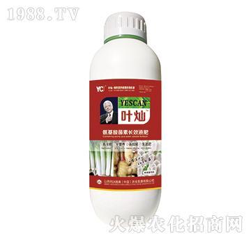 葱姜蒜专用氨基酸菌素长效液肥-叶灿-沃施美
