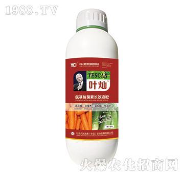 萝卜专用氨基酸菌素长效液肥-叶灿-沃施美