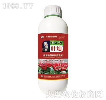 辣椒专用氨基酸菌素长效液肥-叶灿-沃施美