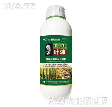 小麦水稻专用氨基酸菌素长效液肥-叶灿-沃施美