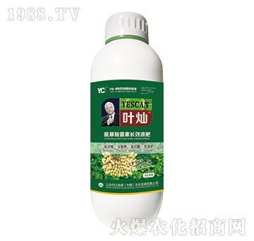 花生专用氨基酸菌素长效液肥-叶灿-沃施美