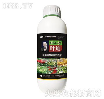 中藥材專用氨基酸菌素長效液肥-葉燦-沃施美