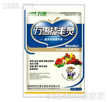 蔬菜专用调节剂-万惠矮丰灵-万惠康