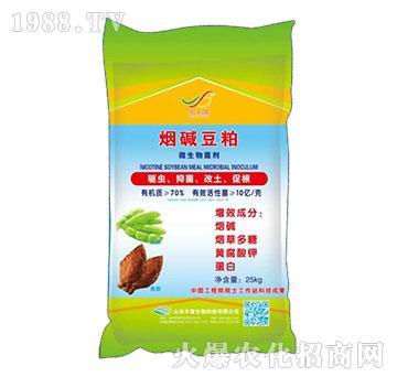 微生物菌剂-盐碱豆粕-丰富生物