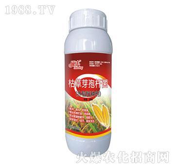 枯草芽孢杆菌-水稻拌种