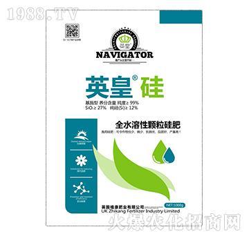 全水溶性颗粒硅肥-英皇硅-植康肥业
