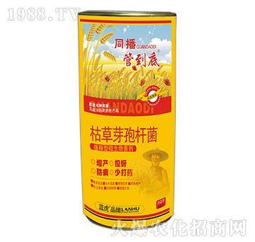 緩釋型微生物菌劑-管到底-藍虎品牌