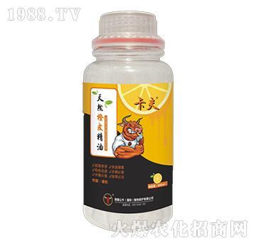 天然橙皮精油-卡夫-德国公牛