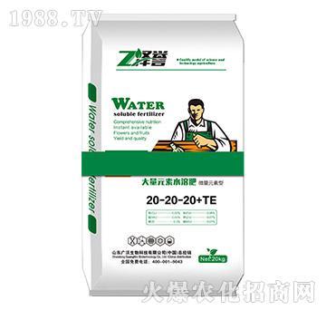 大量元素水溶肥-泽誉-广沃生物