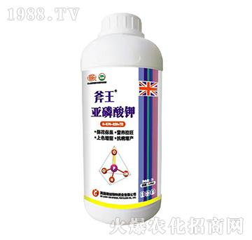 ��磷酸�0-570-320+TE(瓶)-斧王-嘉之��
