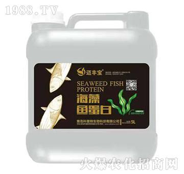 海藻鱼蛋白-迈丰宝-科普特
