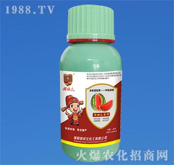 西甜瓜专用含氨基酸素甲
