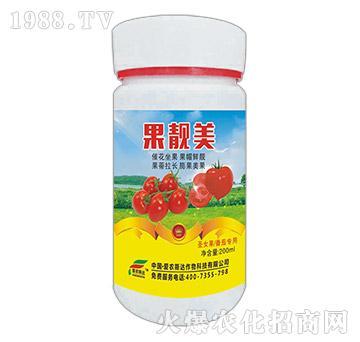 西红柿圣女果专用-果靓