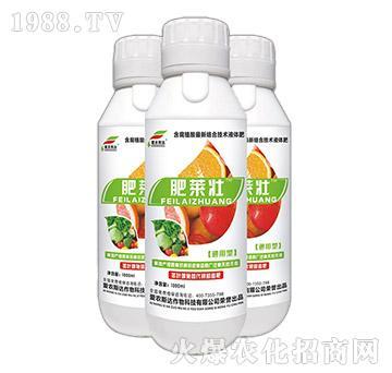 含腐植酸络合液体肥(瓶)-肥莱壮-爱农斯达