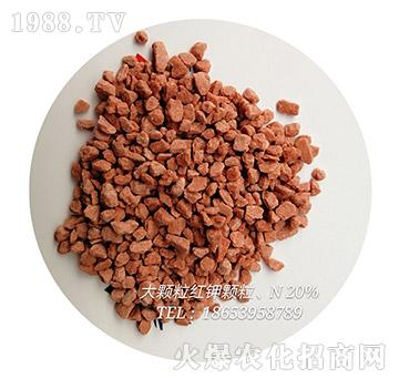 大颗粒红钾颗粒-育农