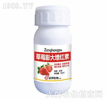 草莓膨大增红素-宝典实