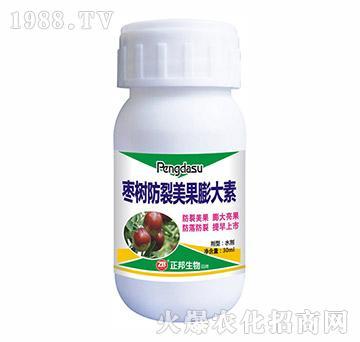 枣树防裂美果膨大素-宝