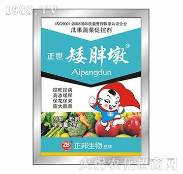 袋装正世矮胖墩(瓜果蔬菜专用)-宝典实业