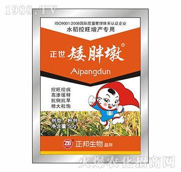 袋装正世矮胖墩(水稻专用)-宝典实业