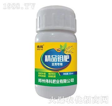 精品钼肥豆类专用-伟科肥业