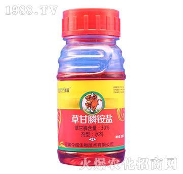 30%草甘膦铵盐(200克)权宜-今越生物