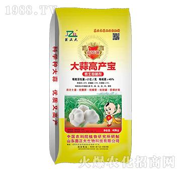 微生物菌剂-大蒜高产宝-菌正大