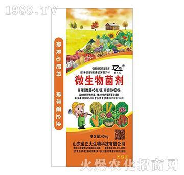 微生物菌剂(40kg)-菌正大