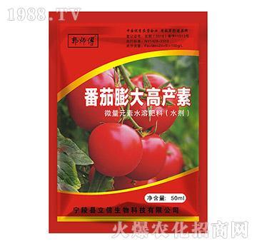 番茄膨大高产素-郭师傅-立信生物