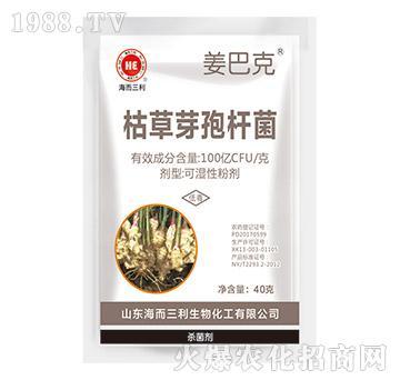 枯草芽孢杆菌-姜巴特-海而三利