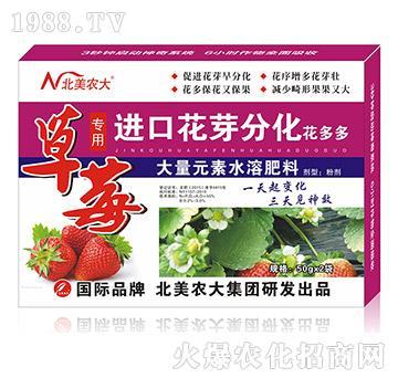 草莓专用进口花芽分化-