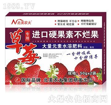 草莓专用进口硬果素不烂果-北美农大