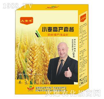 小麦高产套餐-大黄丰-农贝得