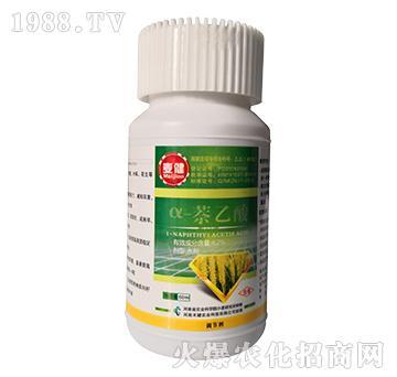 4.2%α-萘乙酸-麦健-健禾农业