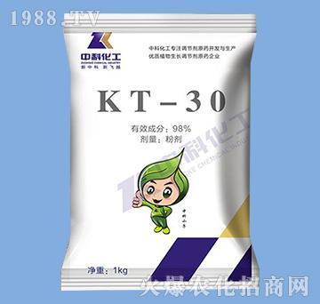KT-30氯吡脲-中科化工