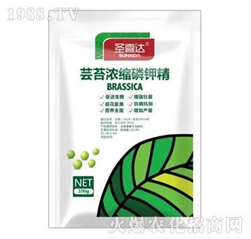 100g芸苔浓缩磷钾精-圣喜达