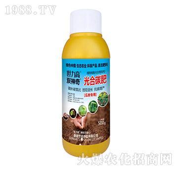 瓜类专用光合碳肥-炭神奇-世力高