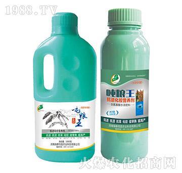 大豆专用抗逆化控营养剂-吨粮王-瑞泰恒昌