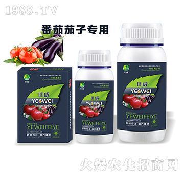 番茄茄子專用含氨基酸水溶肥料-葉威