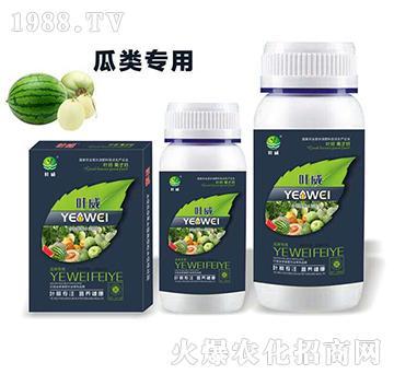 瓜類專用含氨基酸水溶肥料-葉威