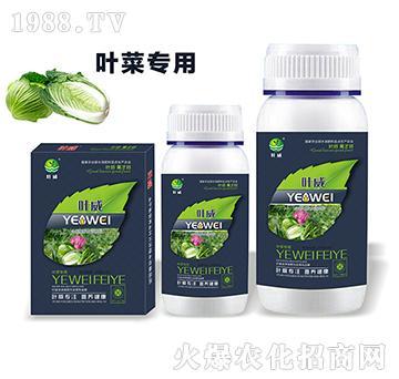 葉菜專用含氨基酸水溶肥料-葉威