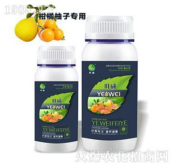 柑橘橙子柚子专用含氨基水溶肥料-叶威