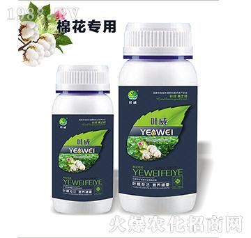 棉花专用含氨基水溶肥料-叶威
