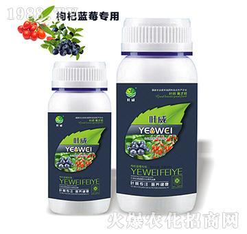 枸杞蓝莓专用含氨基水溶肥料-叶威