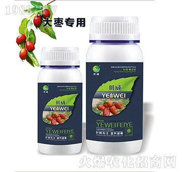 大枣专用含氨基水溶肥料-叶威