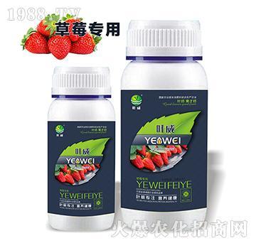 草莓专用含氨基水溶肥料