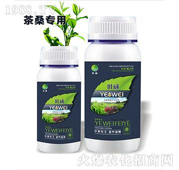 茶桑专用含氨基水溶肥料