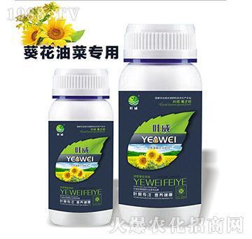 油菜葵花专用含氨基水溶