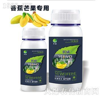 香蕉芒果专用含氨基水溶