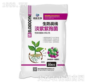 淡紫紫孢菌-生防战区粉剂-微核生物