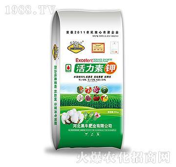 活力素钾-黑牛肥业